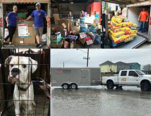 Hurricane Harvey Relief Efforts